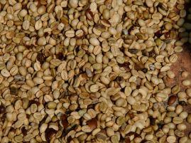 Dried beans!