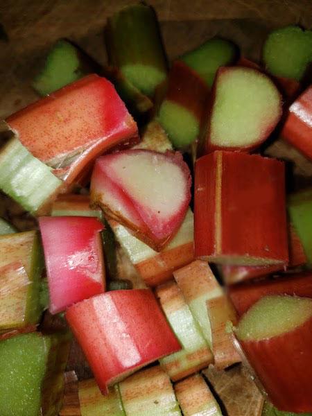 rhubarb6a